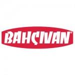 Bahcivan